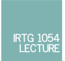 Teaser-IRTG Lecture