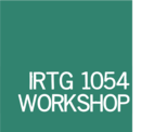 Teaser-IRTG Workshop